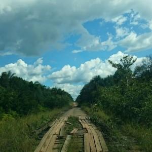 Sur la route BR-319 il y a environ 800 ponts de bois dans mauvais conservation (Crédit photo: Dangelo Rodrigues Campos)