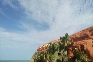 Les falaises, les cactus et au fond la mer. Un spectacle naturel à Canoa Quebrada, au nord-est brésilien. (Crédit photo: Fabio Santana).
